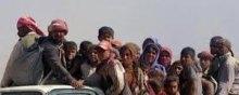 - تقریر للأمم المتحدة یروی تفاصیل شهادات أیزیدیین ناجین من فظائع داعش فی العراق