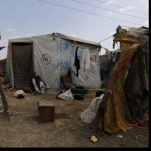 الأمم المتحدة تحذر من تدهور الأوضاع المعیشیة وتفاقم الوضع الإنسانی المروع فی الیمن - Yemen_UNHCR_2016_RF283417