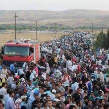 مندوب ایران فی الأمم المتحدة: أزمة اللاجئین لا تحل إلا بمکافحة الارهاب والتطرف