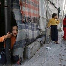 - رسالة 24 منظّمة غیر حکومیّة دولیّة إلى المفوّضة السامیة لحقوق الإنسان والمقرّر الخاصّ بالأراضی الفلسطینیّة المحتلّة  فی خصوص جرائم الکیان الإسرائیلیّ الأخیرة فی فلسطین