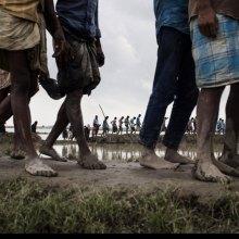 کوفی عنان: لا بدیل عن وقف أعمال العنف، والعودة الکریمة للاجئین الروهینجا