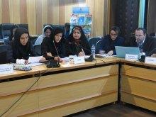 اقامةالدورة التعلیمیة الشاملة لمحاکاة مجلس حقوق الانسان - HRC Simulation (13)