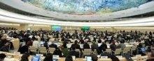 الأراضی-الفلسطینیة-المحتلة - مفوضیة الأمم المتحدة السامیة لحقوق الإنسان تصدر تقریرا عن الشرکات التجاریة فی المستوطنات وحقوق الإنسان فی الأراضی الفلسطینیة المحتلة