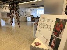 إقامة معرض الفنون الیدویّة للأقلیّات والقومیّات الایرانیّة بمنظمة الأمم المتحدة - Human Arts.Rights Exhibition (5)